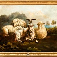 """Schloss Bruchsal - Hauptbau / Corps de Logis - Beletage - Galeriezimmer - Südwand - Gemälde Nr. 46 - """"Schafe und Ziege"""" (Philipp Peter Roos (1657-1706) zugeschrieben; letztes Viertel des 17. Jahrhunderts; Inv.Nr. G 723) (aufgenommen im Juli 2019, am frühen Nachmittag)"""